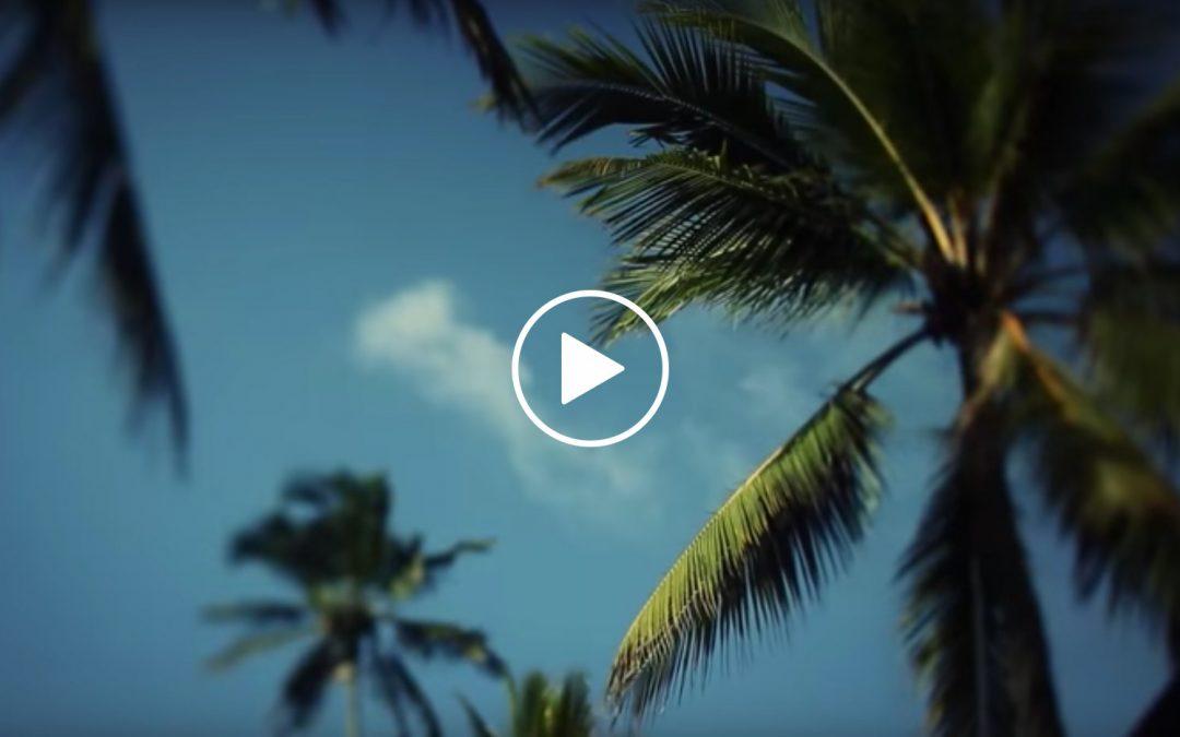 Vacaciones en Sri Lanka
